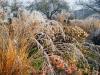 Herbst in der Gärtnerei am Karpfenteich