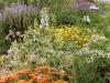 Sommer in der Gärtnerei am Karpfenteich