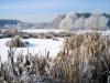 Winter in der Gärtnerei am Karpfenteich - Seeweg