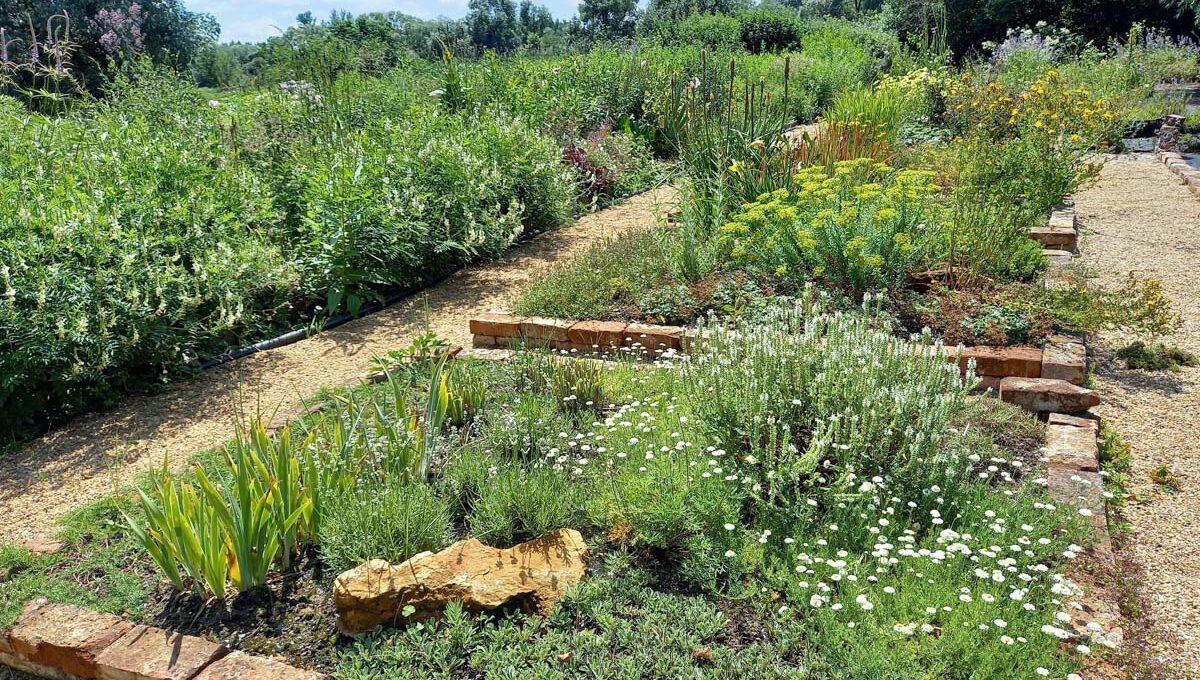 Grabgestaltung mit Stauden (2), Gärtnerei am Karpfenteich